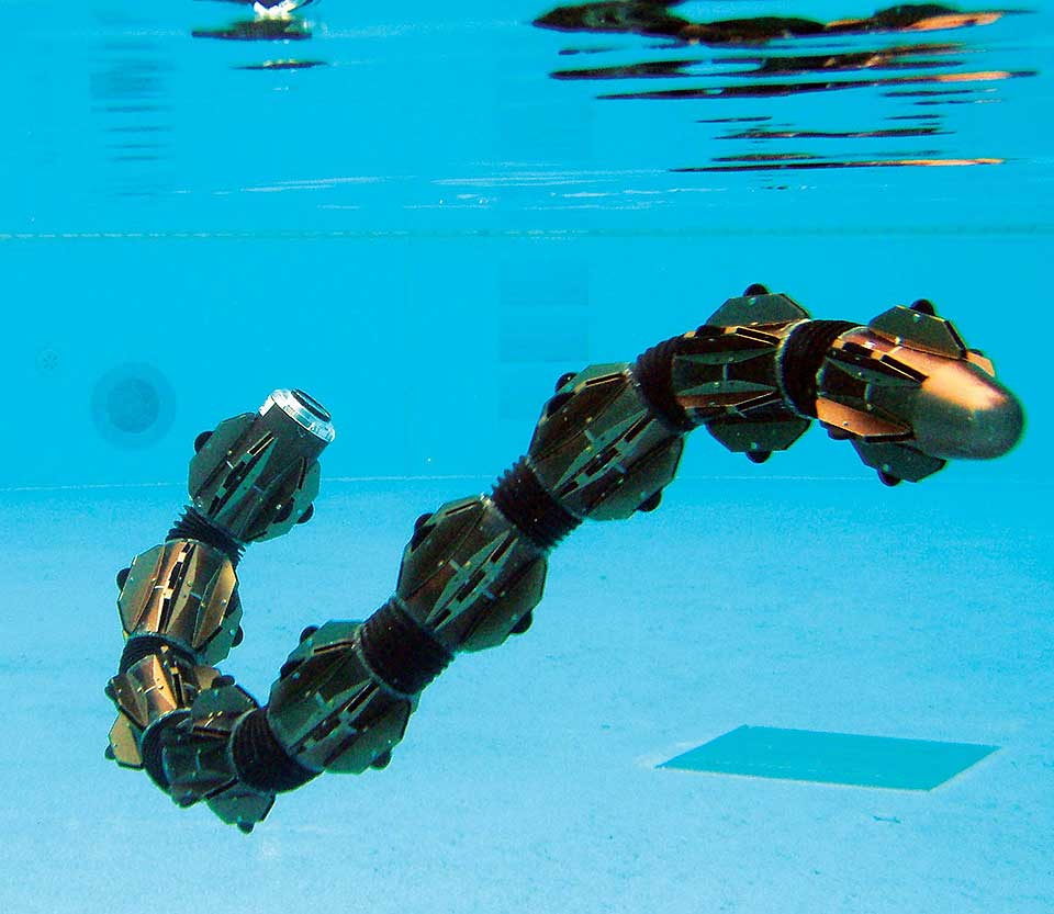 Snake Robot for Underwater Surveillance and Monitoring