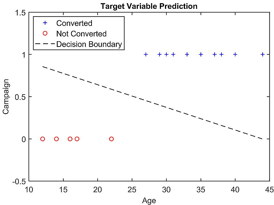 Age-Campaign vs Conversion Graph - Case Study